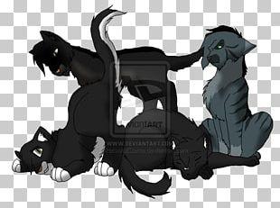 Cat Horse PNG