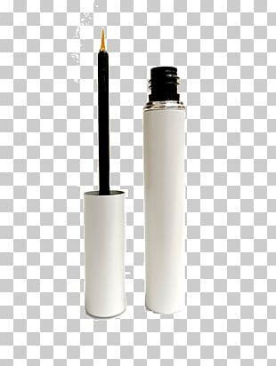 Cosmetics Eyelash Extensions Eye Shadow Beauty PNG