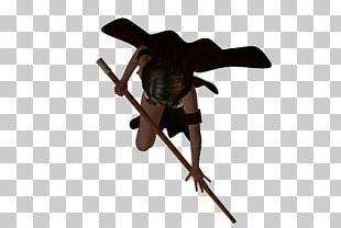 Insect PNG