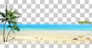 Beach Sea Computer File PNG