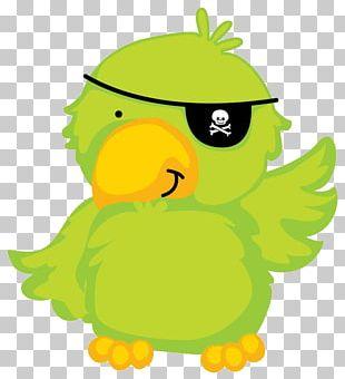 Piracy Papagaio De Pirata Drawing PNG