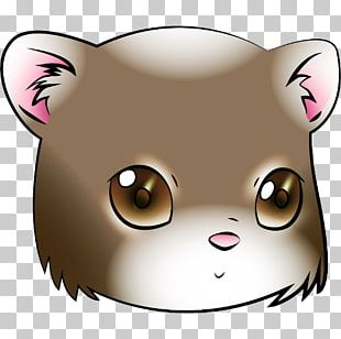Whiskers Cat Bear Snout Dog PNG