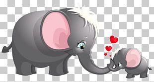 Elephant Cartoon Drawing PNG