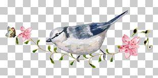 Bird Carpet Mat Floor PNG