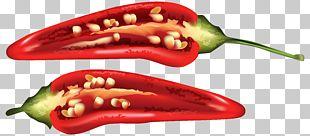 Chili Pepper Bell Pepper Cayenne Pepper Serrano Pepper PNG