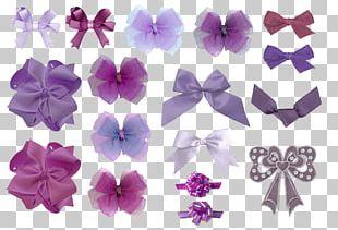 Violet Lilac PNG
