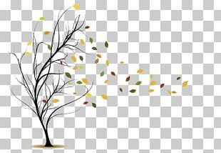 Wind Leaf PNG