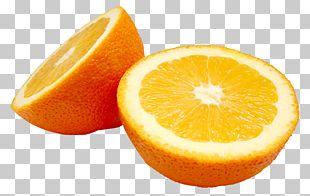 Blood Orange Orange Slice PNG