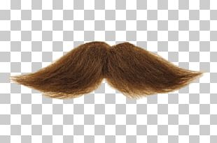 Mustache Brown PNG