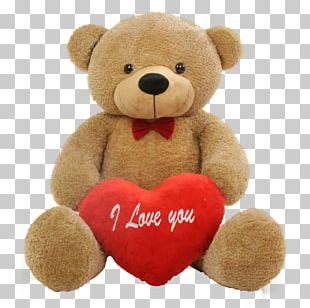 Teddy Bear Valentine's Day Propose Day PNG