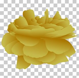 Yellow Petal Champagne Beach Rose Flower PNG