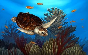 Loggerhead Sea Turtle Reptile Coral Reef PNG