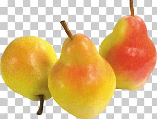 Pear Tomato Asian Pear Chinese White Pear PNG