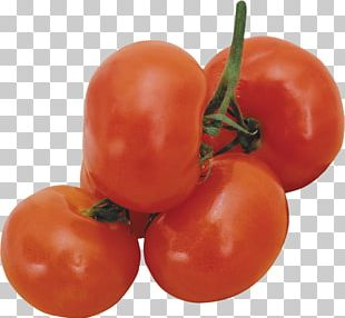 Tomato Berry Cucumber Vegetable Fruit PNG