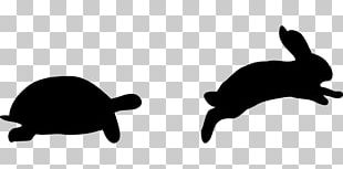 The Tortoise And The Hare Snowshoe Hare Turtle PNG