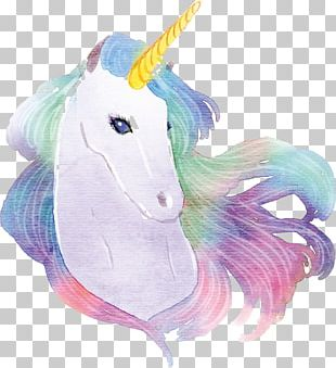 Unicorn Watercolor Painting Drawing PNG