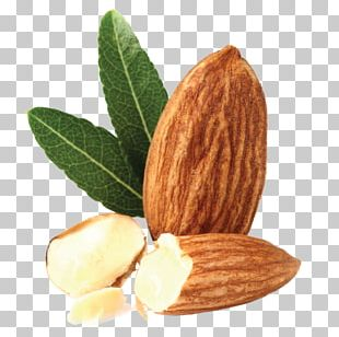 Almond Biscuit Almond Oil Biscotti PNG