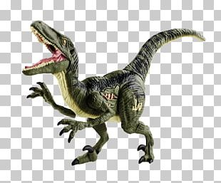 Velociraptor Tyrannosaurus Jurassic Park Dinosaur Toy PNG