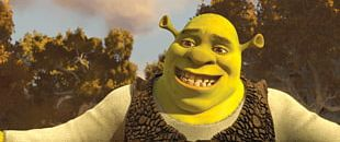 Eddie Murphy Shrek Forever After Princess Fiona Shrek Film Series PNG