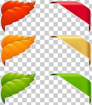 Promotional Labels PNG
