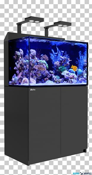 Reef Aquarium Red Sea Coral Reef Protein Skimmer PNG