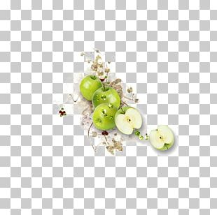 Apple Fruit Manzana Verde PNG
