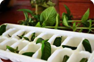 Green Tea Iced Tea Vegetarian Cuisine Peppermint PNG
