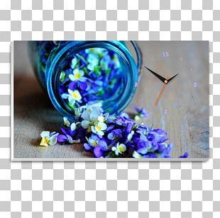 Flower Apple IPhone 8 Plus Photograph PNG