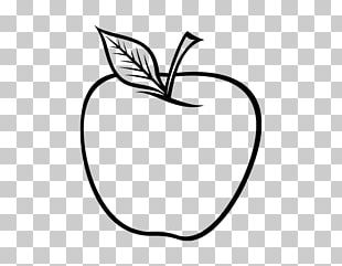 Coloring Book Drawing Apple Food PNG
