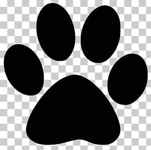 Dog Paw Cougar PNG