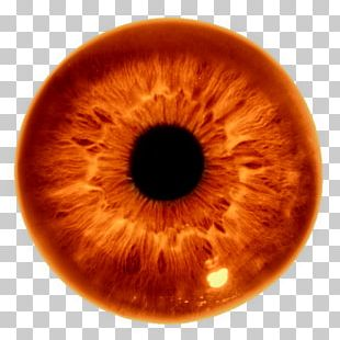 Iris Human Eye The Pupil PNG