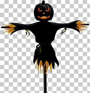 Scarecrow Halloween PNG
