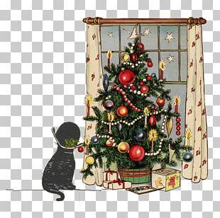 Christmas Tree Christmas Card Christmas Ornament Kartka PNG