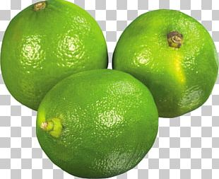 Persian Lime Key Lime Sweet Lemon Citron PNG