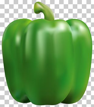 Bell Pepper Chili Pepper Vegetable PNG