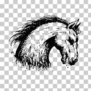 Mane Mustang Pony Pack Animal Snout PNG