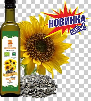 Sunflower Seed Vegetable Oil Common Sunflower Grist PNG