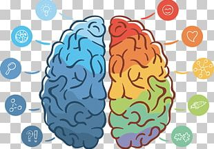 Lateralization Of Brain Function Neuromarketing Agy PNG