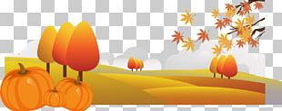 Pumpkin Autumn Cartoon Drawing Illustration PNG