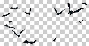 Bird Halloween Silhouette PNG