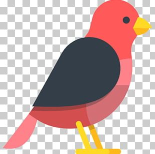 Bird Finch Computer Icons PNG