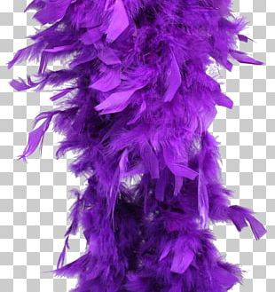 Feather Boa Purple Costume Party PNG