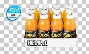 Orange Drink Lemonade Organic Food Juice Flavor PNG