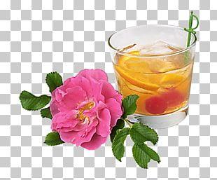 Cocktail Juice Drink Birthday Pub Crawl PNG