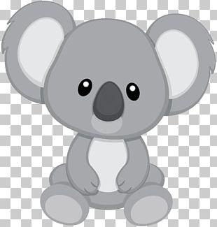 Baby Koala Cuteness PNG