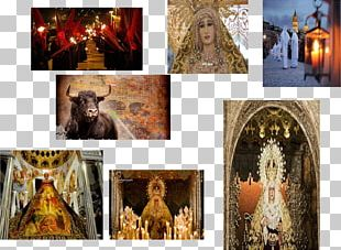 Religion Collage Stock Photography PNG