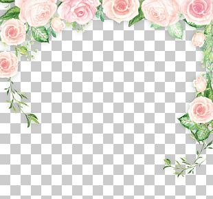 Border Flowers PNG