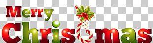 Christmas Day Portable Network Graphics Christmas Tree PNG