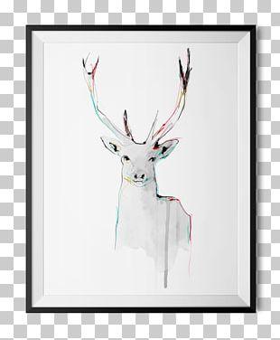 Reindeer Watercolor Painting Drawing Art Dead Stag PNG
