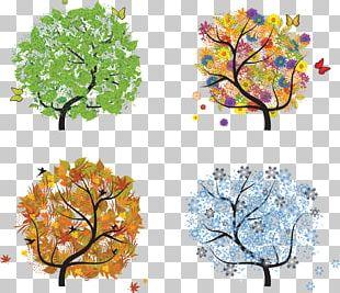 Season Summer Spring Autumn Winter PNG